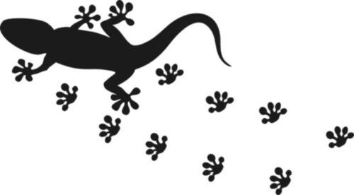 Wandtattoo Gecko Wandtatoo NSF07 Wandaufkleber 40 farben zur Wahl