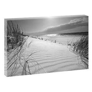 Am-Strand-sw-Bild-Strand-Meer-Duenen-Nordsee-Leinwand-Poster-XXL-120-cm-80-cm-619