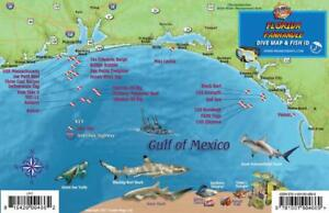 Details about Florida Panhandle Dive & Wreck Map & Fish ID Franko Maps  Waterproof Fish Card