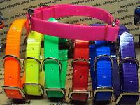 21 Day-glo Nylon Dog Collars Free Name Plate Tracking Hog Safety