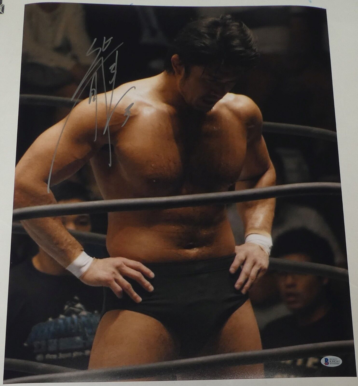 Katsuyori Shibata Signé 16x20 Photo Bas COA Neuf Japon Pro Lutte Autographe 4