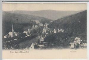 41908-AK-Gruss-aus-Schlangenbad-Panorama-1905