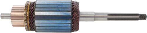 New 6 Volt CW Armature 1888751 for BF Hercules IXB-3 1954-1955 1109602 1109604