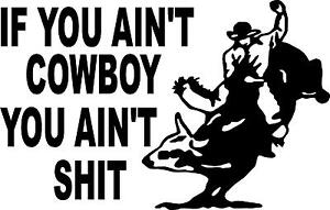 IF YOU AIN'T COWBOY YOU AIN'T SH*T  BULL   LEFT OR RIGHT  VINYL DECAL STICKER 4