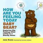 How are You Feeling Today Baby Bear?: Exploring Big Feelings After Living in a Stormy Home by Jane Evans (Hardback, 2014)