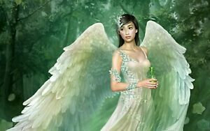 angel-wings-CANVAS-PICTURE-WALL-ART-MEDIUM-20x30-034-inches