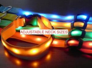 RECHARGEABLE-GLOW-LED-COLLAR-Pet-Cat-Dog-Flashing-Light-Neck-Safety-MICRO-USB