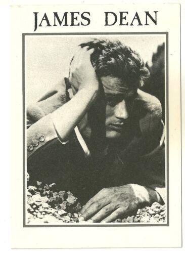 Carte postale  JAMES DEAN CPM Postcard