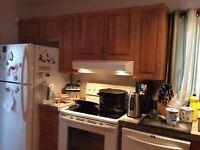 Used Kitchen Cabinets Kijiji Winnipeg
