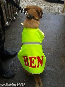 TREAT-YOUR-DOG-Personalised-reflective-hi-vis-DOG-Vest-Any-name-logo-phrase