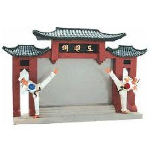 Taekwondo Arti Marziali CORNICE stand foto regalo Display FIGURINA Tkd Wtf