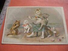 3 Litho Cards c1890 CATS dressed as human anthropomorph KATZE katten chat kitten