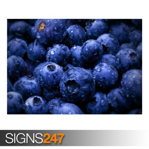 AE717 Photo Picture Poster Print Art A0 A1 A2 A3 A4 BLUEBERRIES