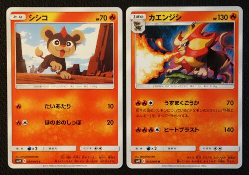 JAPANESE Pokemon Cards Litleo 014 Pyroar 015//095 SM12 Alter Genesis NM//M