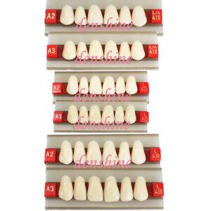 FDA-Acrylic-Resin-Dentist-Dental-upper-Anterior-Teeth-Shade-A2-A3-G419-G425-G438