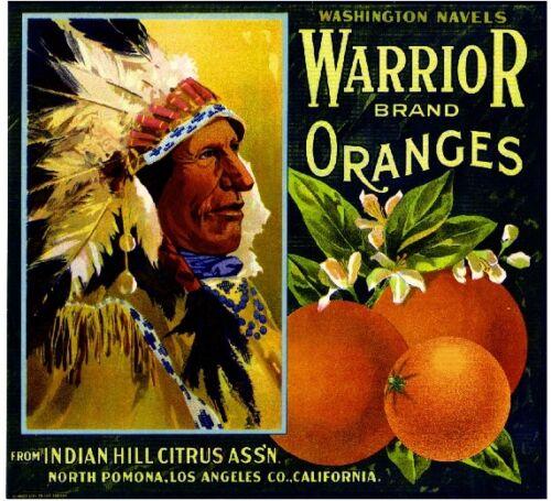 Pomona Los Angeles County Warrior #2 Orange Citrus Fruit Crate Label Art Print