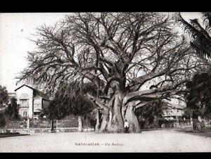 MADAGASCAR-VILLAS-amp-BAOBAB-anime-cliche-periode-1920-1930