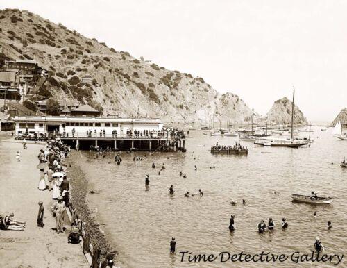 - c.1910- Historic Photo Print Wharf /& The Beach Catalina Island Calif