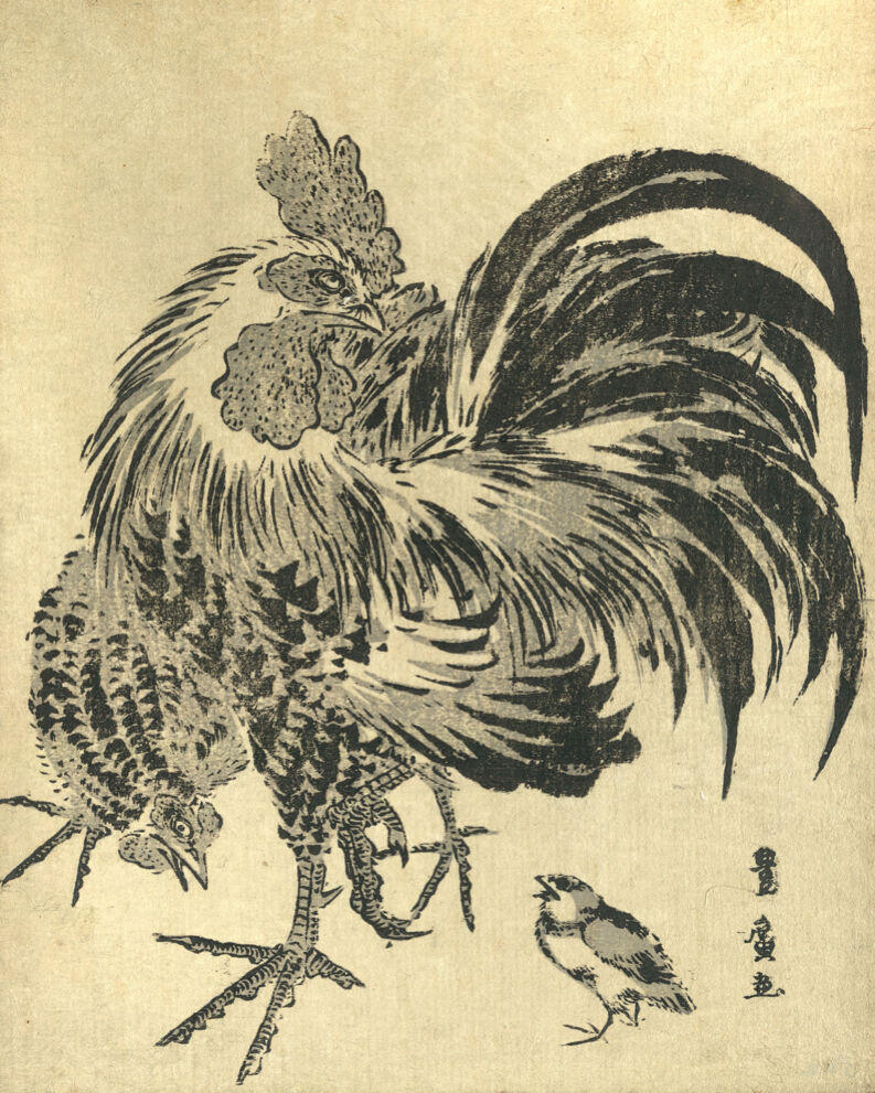 1527 .Rooster painting. Asian vintage POSTER. Birds. Asian Decorative Art.