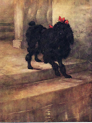 POODLE CHARMING IMAGE OLD 1934 COLOUR ART PRINT by MAUD EARL