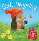 Little Hedgehog: Storybook and Double-Sided Jigsaw by M. Christina Butler, Tina MacNaughton (Novelty book, 2013)