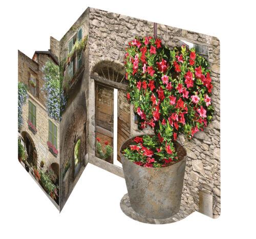 3D garden greeting card Italian floral design celebration birthday anniversary
