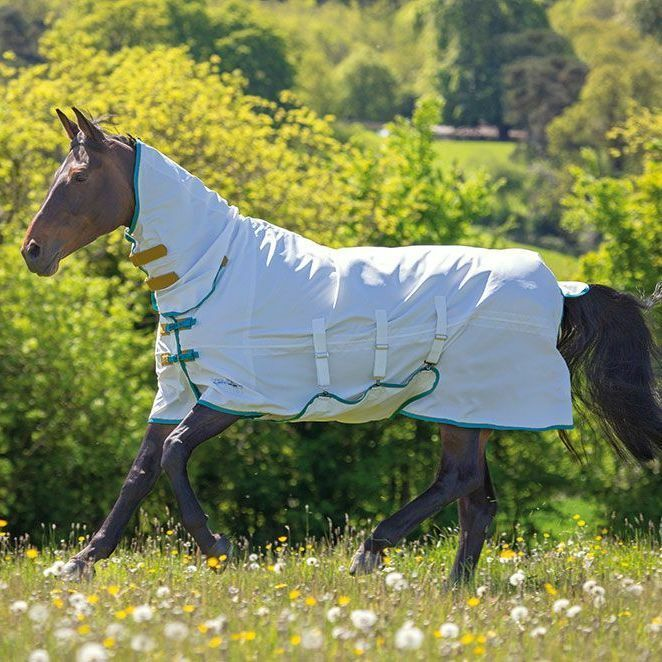 Shires Tempest Plus Sweet Itch Combo SS19