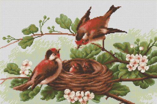 Luca-S  BM3005  Oiseaux au nid   Kit  Broderie  Point de croix  Compté
