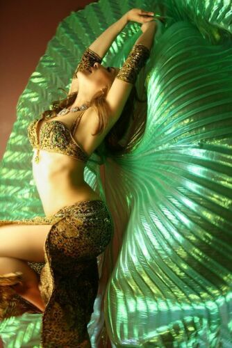 shippingUSA Isis wings+2 sticks+bag close back Isis wings Egyptian Belly Dance