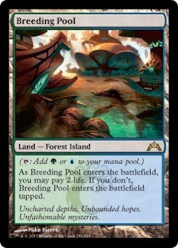 Breeding Pool MTG Gatecrash Rare Land EDH Modern