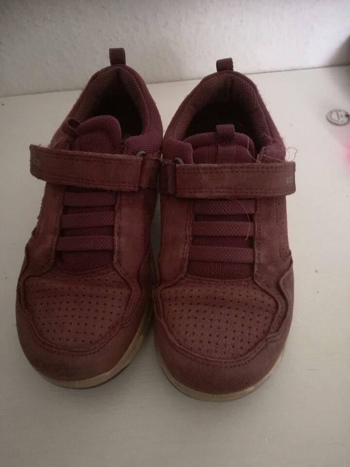 Sneakers, str. 32, Ecco