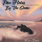 Pan Flutes by the Ocean by Ken Davis (CD, Oct-2004, Inspired Distribution)