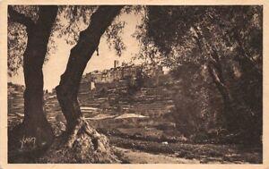 San-PAUL-la-ville-attraverso-gli-alberi-di-ulivo-Francia