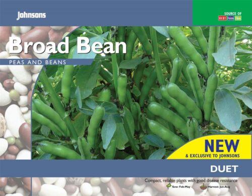 Vegetable 45 Seeds Johnsons Seeds Pictorial Pack Broad Bean Duet