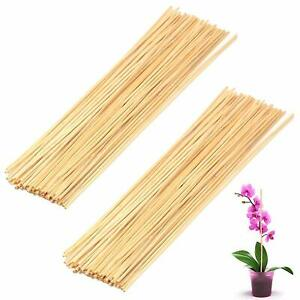 50-Wooden-Bamboo-Plant-Sticks-Garden-Canes-Plants-Support-Flower-Stick-Cane-40CM