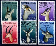 SOMALIA AFIS 1955 - POSTA AEREA ANIMALI Serie nuova **