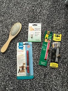 cat collars name holder and brush job lot items - Croydon, United Kingdom - cat collars name holder and brush job lot items - Croydon, United Kingdom