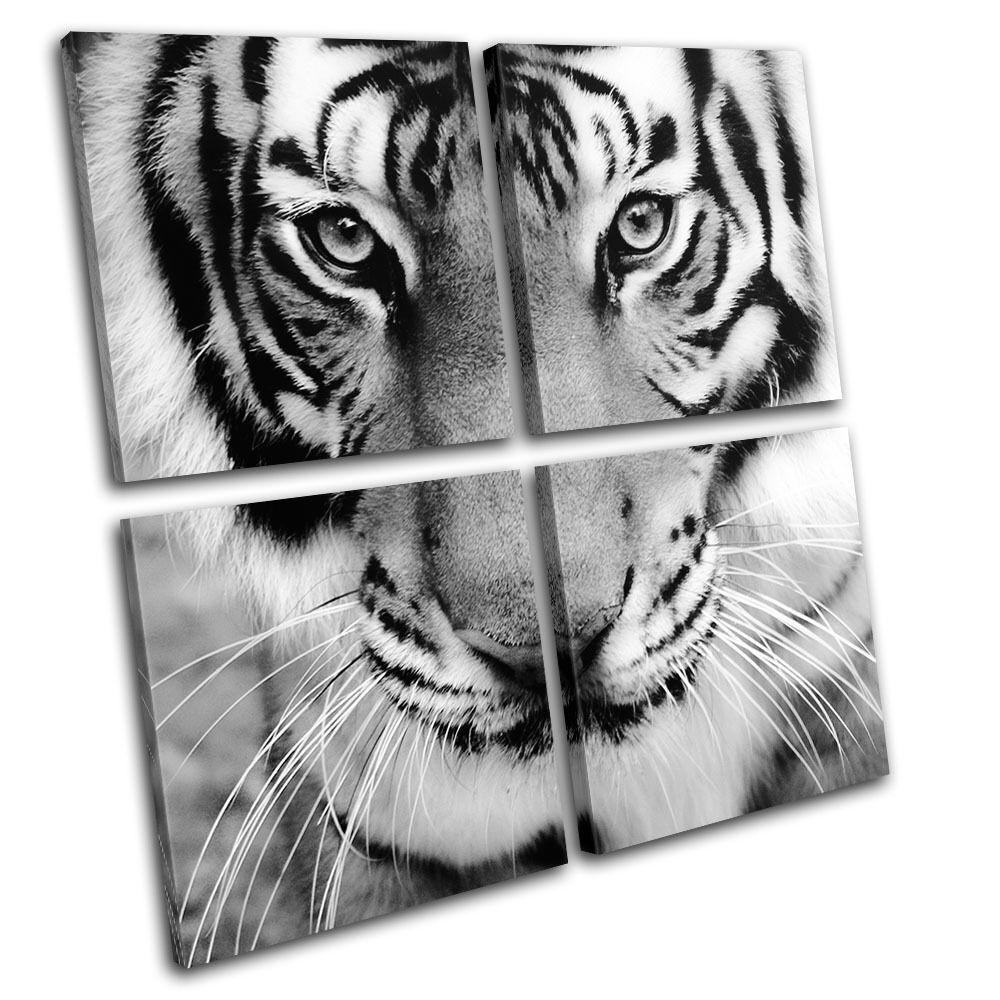 Tiger Tiger Tiger Face Animals MULTI TELA parete arte foto stampa 42da41