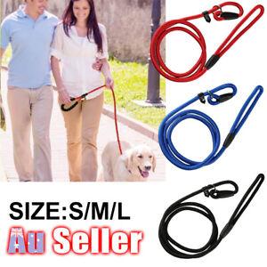 NSW-Slip-Puppy-Lead-Nylon-Rope-Dog-Training-Correction-Leash-Pets-Cesar-Millan