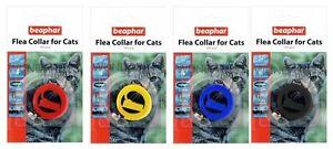 BEAPHAR-plastica-impermeabile-Collare-per-gatti-oltre-1-ANNO-PROTEZIONE-X