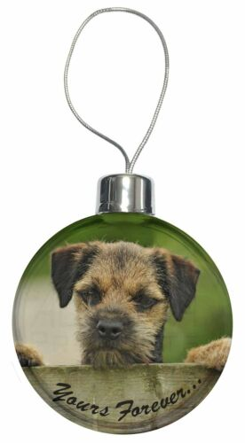 "AD-BT5yCB Border Terrier Puppy Dog /""Yours Forever.../"" Christmas Tree Bauble Dec"