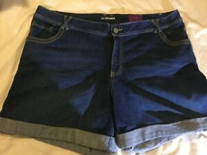 93dc860f03a Lane Bryant Women s Plus Size 22 Blue Denim Shorts 6