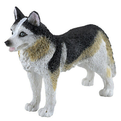 BROWN EYES SIBERIAN HUSKY GRAY WHITE TINY ONES DOG Figurine Statue Resin