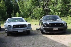 1978 Mustang II (ONLY LOOKING FOR PARTS)