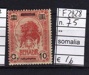FRANCOBOLLI-ITALIA-COLONIE-SOMALIA-NUOVI-N-75-F2828