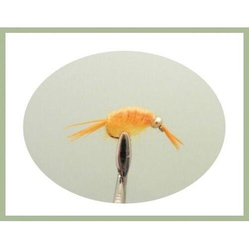 Shrimp Flies Fly Fishing 20 Per Compartment Box,Various Shrimp Patterns