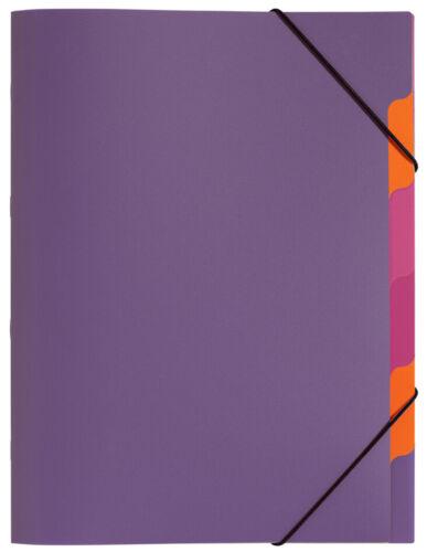 "PAGNA Ordnungsmappe /""Funky School/"" DIN A4 PP 5 Fächer transluzent lila"