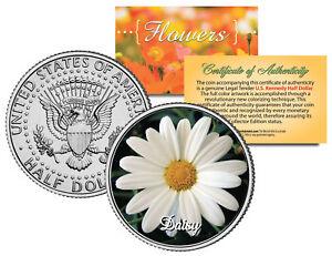 DAISY-FLOWER-JFK-Kennedy-Half-Dollar-US-Colorized-Coin