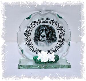 picture-of-Black-amp-White-Springer-Spaniel-round-cut-Glass-plaque-CD10