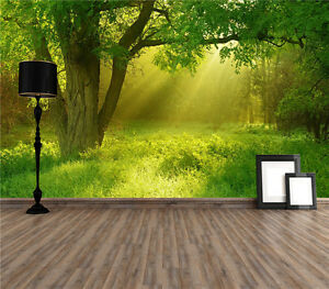 Details About Forest Sunshine Photo Wallpaper Mural Giant Wall Covering Decor Pre Pasted 1300